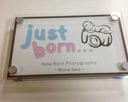 Just Born Acrylic Panel