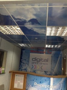 Digital Print Direct Wall/Ceiling